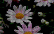 cross_stitched_daisies.jpg